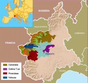 la provincia di torino vitivinicola